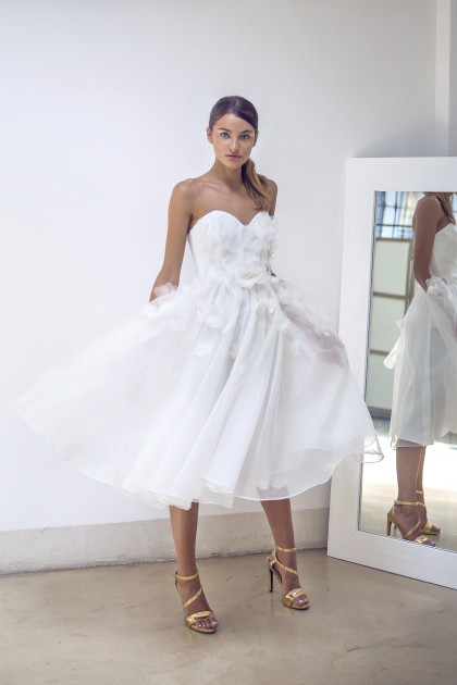 KNEE-LENGTH BODICE AND SILK ORGANZA DRESS